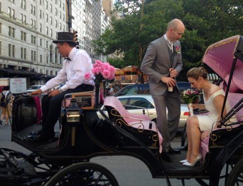 Carriage Ride Marriage Proposal
