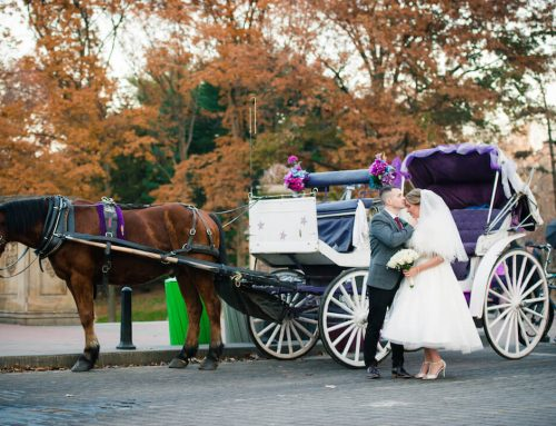 Carriage Ride Package